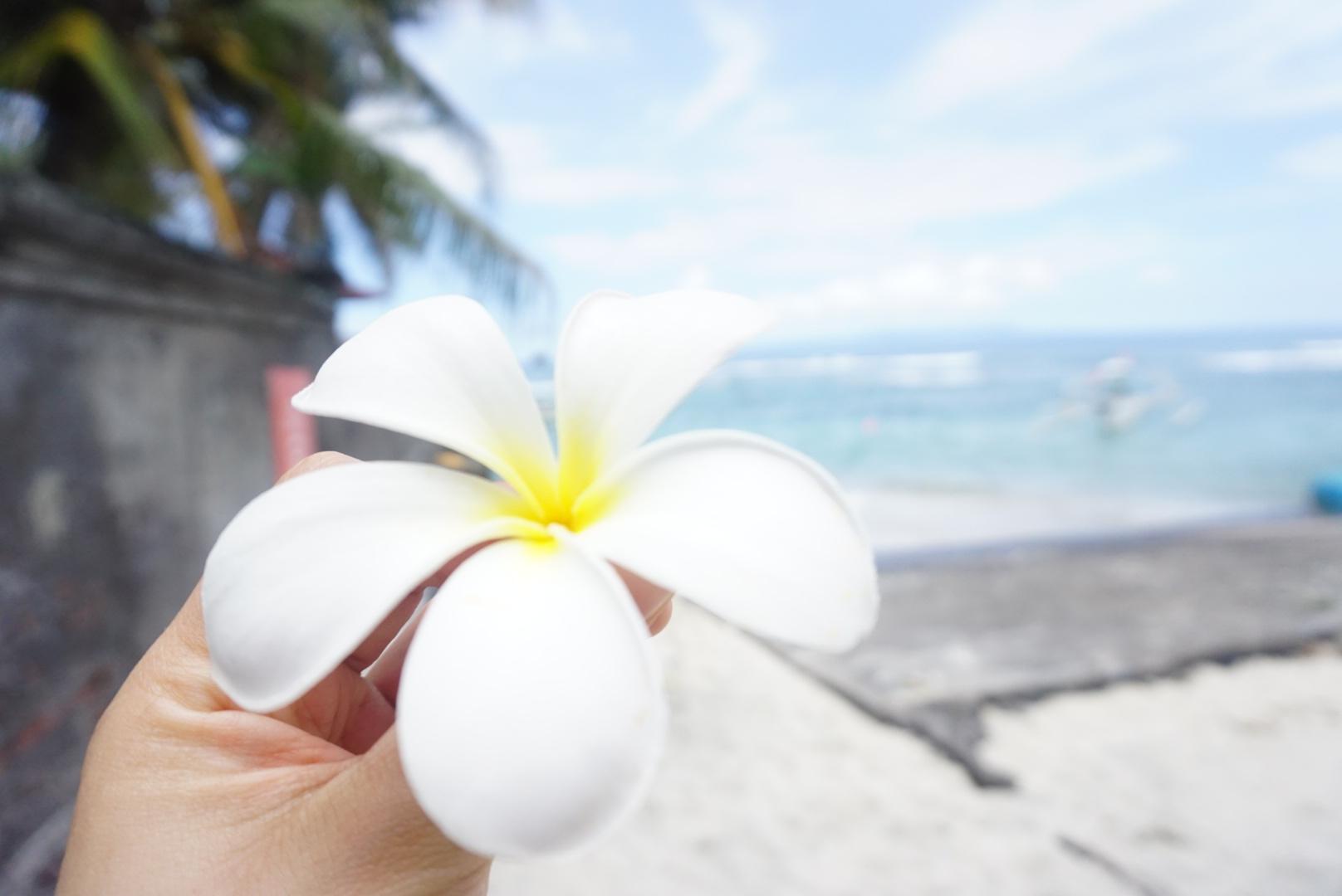 Nachhaltig Reisen auf Bali
